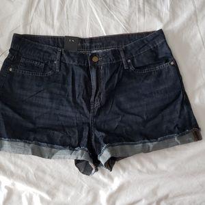 NWT Calvin Klein Jean Shorts